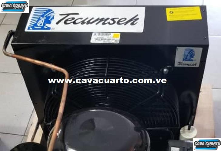 EQUIPO TECUMSEH / 2HP - SUMINISTRO CAVA CUARTO - P.P